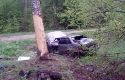 В Максатихинском районе автомобиль врезался в дерево — погиб водитель