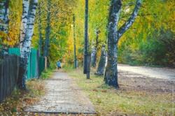 Советская улица посёлка Максатиха